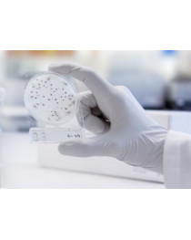 1002941. Микробиолигическая среда Compact Dry ETB энтеробактерии, 40 шт./уп.